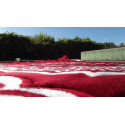 Tapis de Prière épais & grande taille - fond ROUGE & motif BLANC