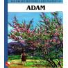 Les belles histoires des prophètes (Adam) sur Librairie Sana