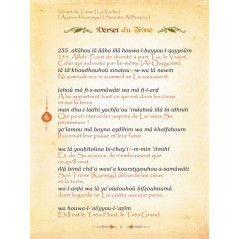 Chapitre AMMA poche - CARTON - Fr/Ar/Phonétique - (BLEU)