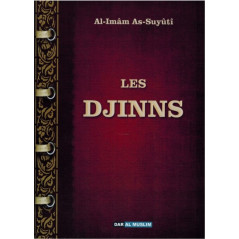 Les Djinns - d'après Al Imam As-Suyuti