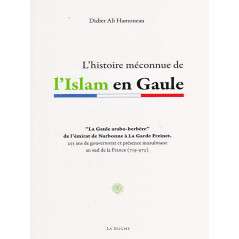 L'histoire méconnue de l'Islam en Gaule d'après Didier Ali Hamoneau