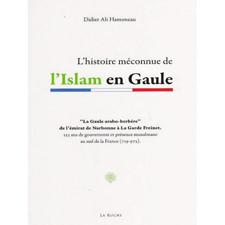 L'histoire méconnue de l'Islam en Gaule d'après Didier Ali Hamoneau