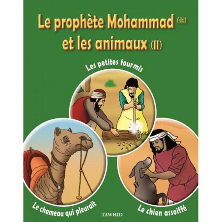 Le prophète Mohammad (SWS) et les animaux (2): Les petites fourmis, Le chameau qui pleurait, Le chien assoiffé