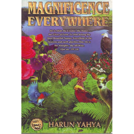 Magnificence evrywhere by Harun Yahya