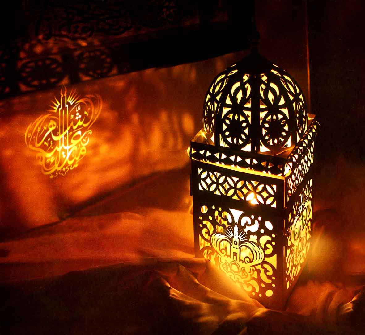 - Lampe & Veilleuse